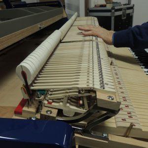 zanta-pianoforti-costruttori-di-strumenti-tradizionali-camponogara-venezia-gallery