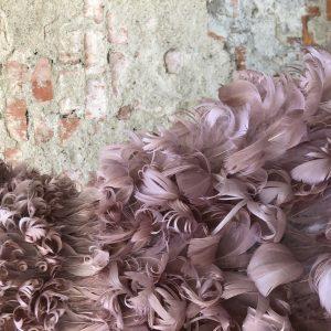 mazzanti-piume-feather-ornament-makers-firenze-gallery-0
