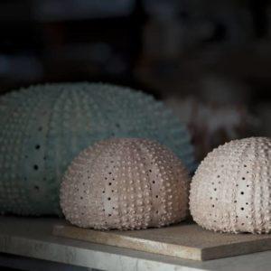 angelo-sciannella-ceramists-cabras-oristano-gallery-0